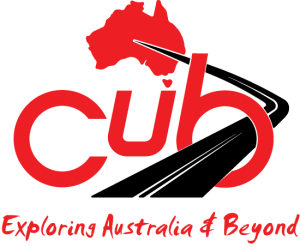 cub logo and vision statement